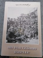 """Giulio Bolaffi, UN PARTIGIANO RIBELLE, I Diari Di Aldo Laghi – Commandante Della """" Stellina """" 1944-45, Susa 2010 - RARA - Oorlog 1939-45"""