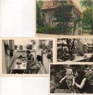 KOMEN UIT  ALBUM  HENRI D' HONT    ( VOGELKENER EN RAADGEVER TE STROMBEEK ) GEBOOREN IN IZEGEM 1908 - Photos
