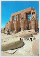 EGYPTE - THEBES - Temple De Ramses II  (4689) - Autres