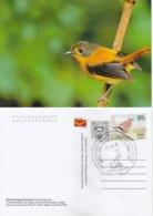 India  2019  Birds  Black & Orange Flycatcher  Stamp Card  # 20620   D Inde  Indien - Songbirds & Tree Dwellers