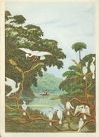 Gabon Pique Bœufs Et L' Ogooue Peinture Grebert Missions Evangeliques De Paris - Gabon