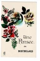 Carte Fantaisie - Une Pensée De Montmelard - Pas Circulé - Francia