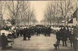 Cp Moulins Allier, Cours De Bercy, Rind - Frankreich