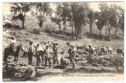 EL KENITRA - Une Charbonnière Dans La Forêt De Mamora - 1916 - Sonstige