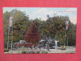 Orange Grove   Florida  Ref 3497 - Other