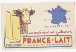 BUVARD -  FRANCE LAIT VACHE   --- Z900 - Produits Laitiers