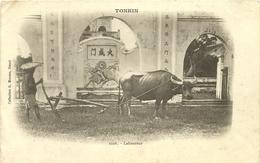 (TONKIN )( LABOUREUR )( METIERS )( AGRICULTURE ) - Viêt-Nam