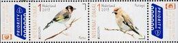 Netherlands - 2019 - Europa CEPT - National Birds - Mint Stamp Set - Period 2013-... (Willem-Alexander)