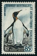 Neuf Sans Charnière N° 12/17, La Série T.B. - Stamps