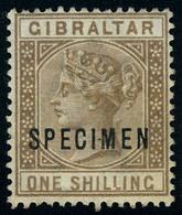 Neuf Avec Charnière N° 14, 1s Bistre Victoria, Surchargé Spécimen T.B. - Stamps