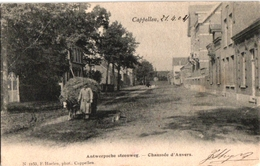 1 Postkaart Kappellen Cappellen  Antwerpse Antwerpsche Steenweg Ezel Met Hooikar  C1904  Drukker Hoelen N°1153 - Kapellen