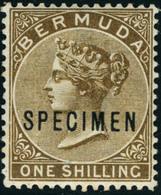 Neuf Avec Charnière N°20 Et 23. Les 2 Valeurs Surchargées Spécimen. Cl. T.B. - Stamps