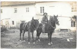 Carte-photo...Tchéquie...cour De Ferme .chevaux .animée..cachet Photographe (HEINR JLLASSEN )...Kratzau.. - Fermes