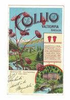 CARTOLINA PUBBLICITARIA POST CARD CARTE POSTALE COLLIO VALTROMPIA - Pubblicitari