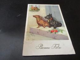 Fantasiekaart Honden - Honden