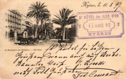 Hyeres, La Boulevard Des Palmiers, Stempel Hotel Des Iles D` Or, 1897 - Hyeres