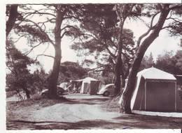 "CPM/CPSM - VEDENE - Camp Touristique ""Flory"" - France"