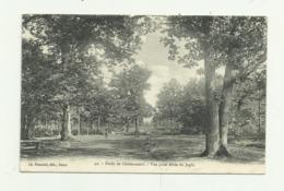 Cpa  EURE ET  LOIR   42.  Foret De Chateauneuf.  Vue Prise Allée Du Jaglu - Châteauneuf