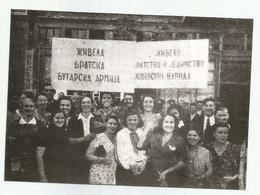 Meeting Of 1 Bulgarian Army In Yugoslavia Zs245-221 - Krieg, Militär