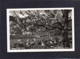 87456   Austria,   Schruns  Montafon,  VG  1935 - Schruns