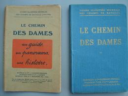 1920 Guides Illustrés Michelin Champs De Bataille LE CHEMIN DES DAMES - Livres, BD, Revues