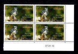 SAINT PIERRE MIQUELON  Oiseau Puraline Bloc De 4 Coin Daté 07.01.10  Gomme Intacte ** LUXE** - St.Pierre & Miquelon