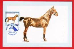 Armenien / Armenia Karabakh 2004-2005, Joint Issue With Armenia, Karabakh Horse - Card Maximum - Armenië