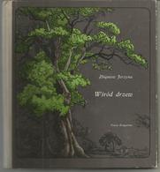 Zbigniew JERZYNA : Wsrod Drzew (parmi Les Arbres) En Polonais - Livres, BD, Revues