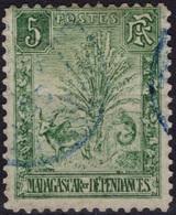 MADAGASCAR  66 (o) Zébu Et Arbre Du Voyageur Ravenala 1903 - Madagascar (1889-1960)