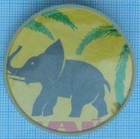 USSR / Badge / Soviet Union / Fauna. Elephant. - Animals