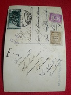Gruppo Ortelio Cevedale Ghiacciaio Cedec Dal Passo Pasquale Segnatasse Bella Calligrafia Formato Piccolo VIAGGIA ANNI 50 - Ohne Zuordnung