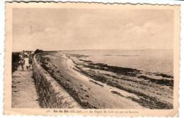 41the 67 CPA - ILE DE RE - LA DIGUE DE LOIX - Ile De Ré