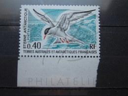 VEND BEAU TIMBRE DES T.A.A.F. N° 55 + BDF , XX !!! - Französische Süd- Und Antarktisgebiete (TAAF)