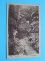 Partie Du SCHNELLERT Petite Suisse Luxembourgeoise ( Edit. R. TIPPMANN Diekirch ) Anno 1948 ( Voir / Zie Photo ) ! - Berdorf