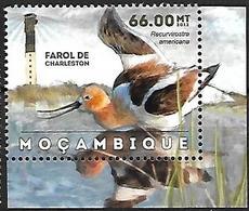 MOZAMBIQUE - MNH - 2012 -  American Avocet    Recurvirostra Americana - Vogels
