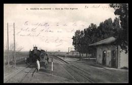 ALGERIE, Maison-Blanche, Gare De L'Est Algerien, Train A Vapeur - Autres Villes