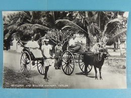 Rickshaw And Bullock Hackery Ceylon - Sri Lanka (Ceylon)