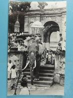 The Bearer Of The Tooth Relic. Kandy Temple Ceylon - Sri Lanka (Ceylon)