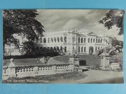 The Colombo Museum Ceylon - Sri Lanka (Ceylon)