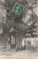 LA HAYE De ROUTOT  Les Ifs Du Cimetière ( Arbres Remarquables ) - Autres Communes