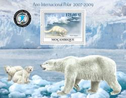 Mozambique 2009   International Polar Year ,polar Bear - Mozambique
