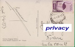TRIPOLI. Cent. 10 Isolato Su Cartolina. Poste Coloniali. Colonie. Fiera Campionaria Di Tripoli.Struzzo.  865 - Libye