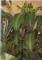 Les Plantes D Appartement   °°°° Stephane Dupart - Garden