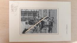 LAITIER  Flamand ( âne ) - 1915 - Belgique
