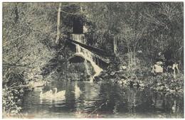 58 - Le Morvan Illustré - Une Fontaine - Non Classificati
