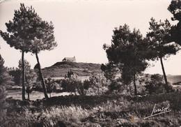 56----CARNAC---le Tumulus Saint-michel--voir 2 Scans - Carnac