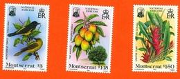 MONTSERRAT #551-3   -   BIRDS , FRUITS . PLANTS  -  NATIONAL SYMBOLS  -  MINT - Montserrat