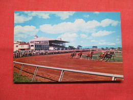 Horse Racing  Charles Town West Virginia        Ref 3501 - Postcards
