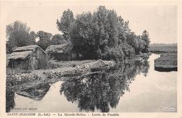 ¤¤  -    SAINT-JOACHIM  -  La Grande BRIERE  -   Levée De Pendille     -  ¤¤ - Saint-Joachim