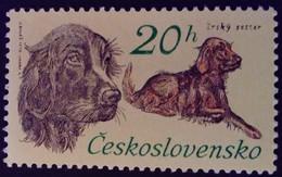Tchécoslovaquie Czechoslovakia Ceskoslovensko 1973 Animal Chien Dog Yvert 1999 * MH - Ungebraucht